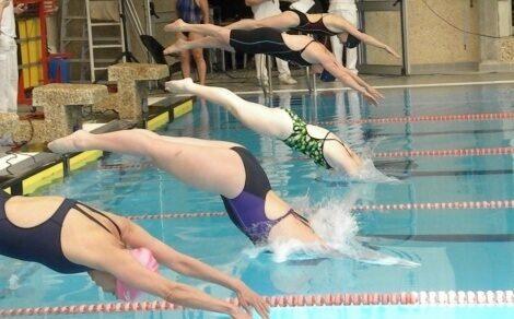 שלבים בקפיצת ראש בשחייה