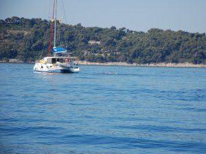 פלוטילת שחיינים באיי יוון