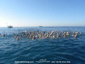 אימוני שחייה לקבוצת המאסטרס