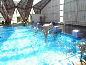 שחייני המאסטרס עולם המים